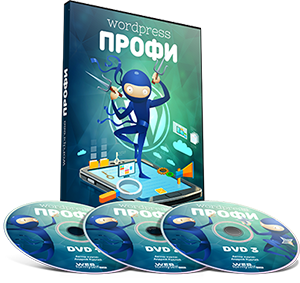 WordPress -профессионал
