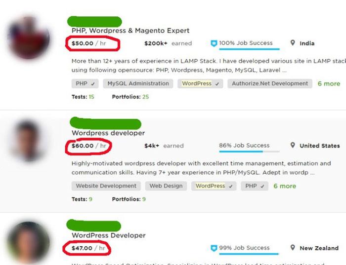 WordPress — популярная CMS под любые задачи