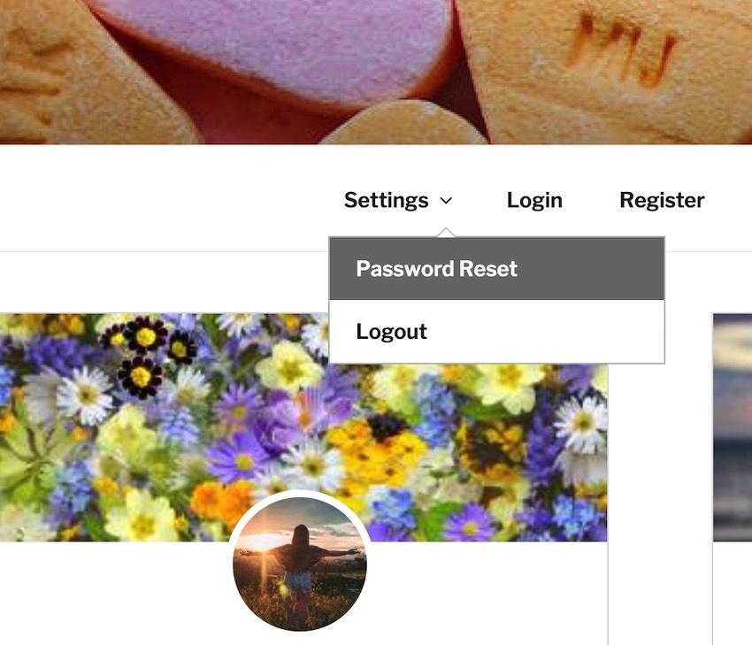 Лучшая навигация: как в WordPress добавить выпадающее меню