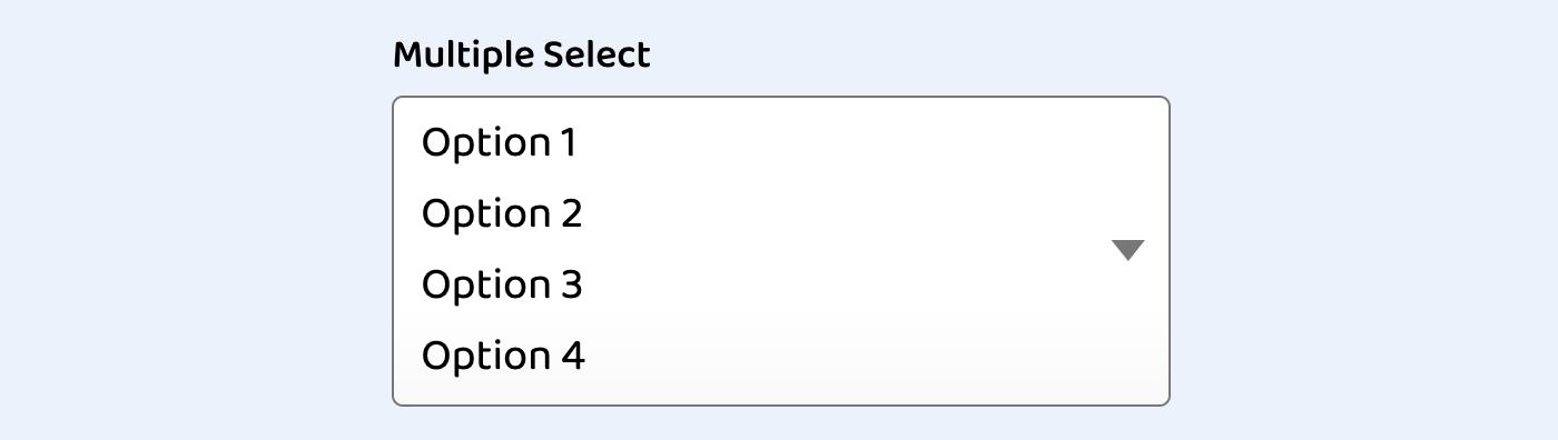 Пользовательские стили элементов select на CSS